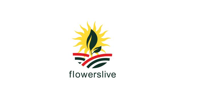 Интернет-магазин комнатных растений и декора