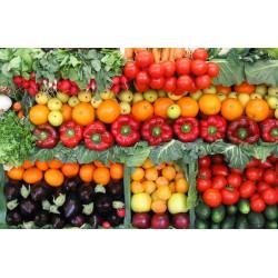 Рассада овощных культур