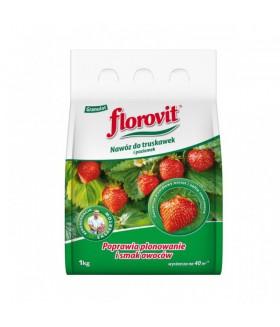 FLOROVIT (ФЛОРОВИТ) для клубники и земляники 1кг